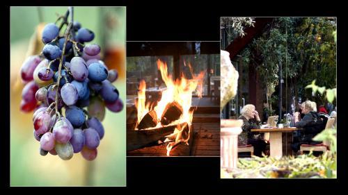 hubland wintergarten 06